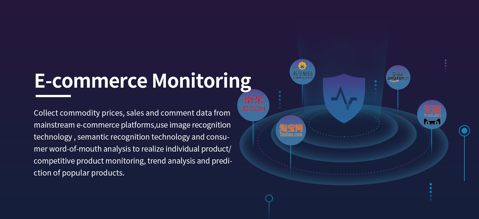 E-commence Monitoring Insight